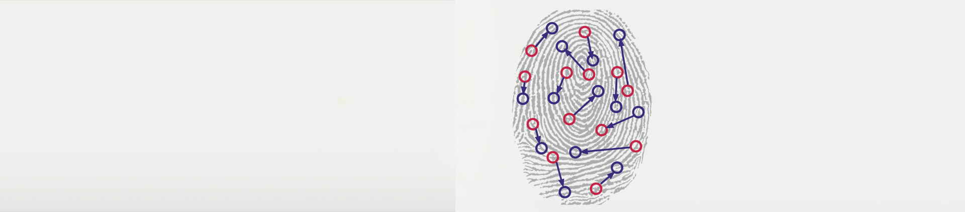 biometric-fingerprint.png